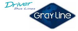 Driver Bus Lines Gray line