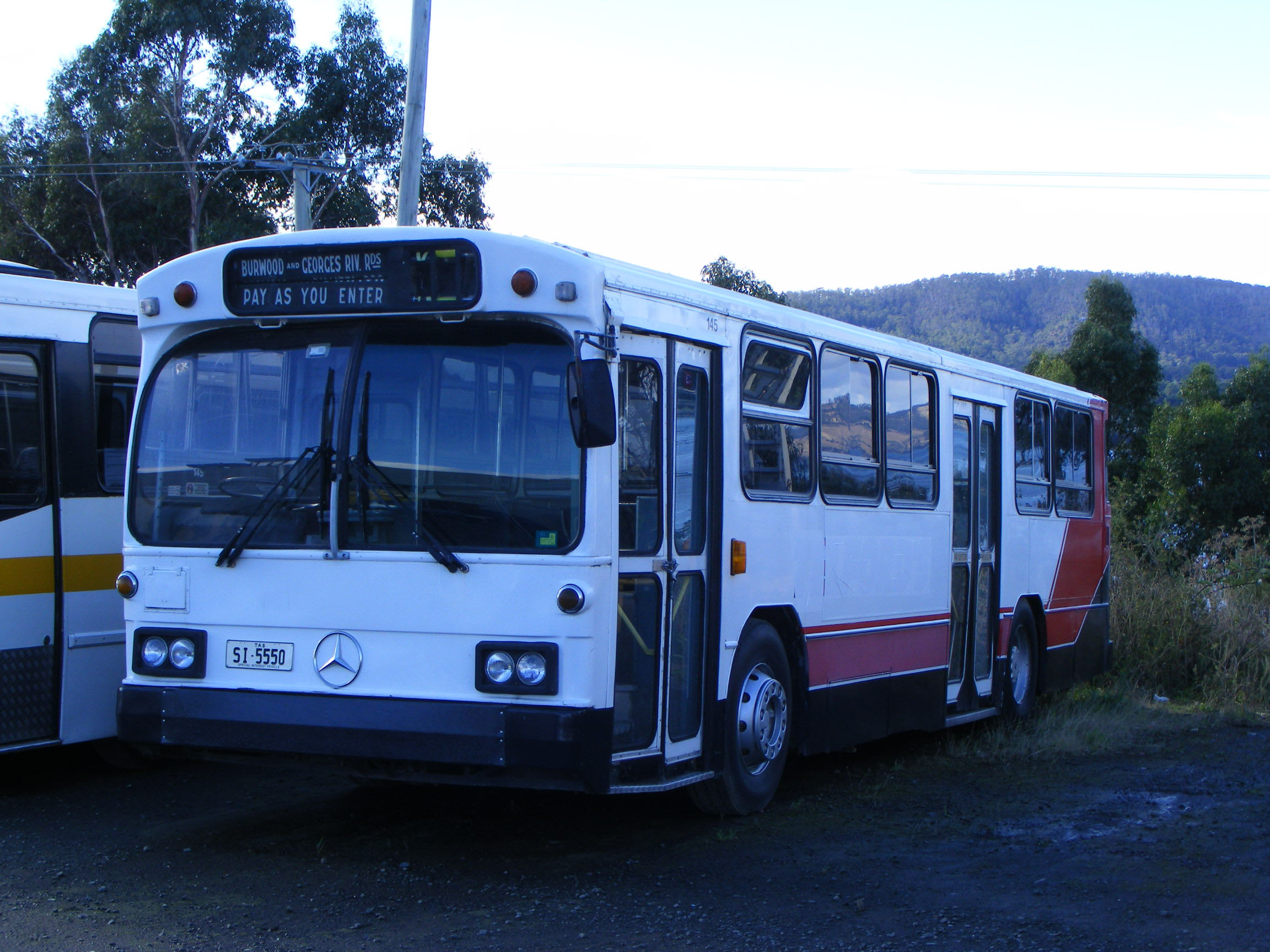 Wisby's of Margate | australia.SHOWBUS.com BUS IMAGE GALLERY