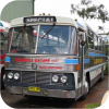 Illawarra Escape Tours