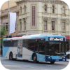 More NSW bus images